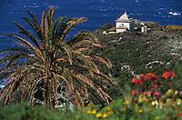 Europe/France/Corse/2B/Haute-Corse/Cap Corse/Env. de Minervio: La côte