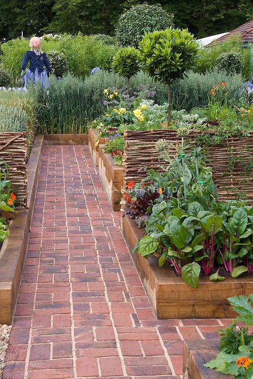 Vegetable Garden in Raised Beds Growing Wheat