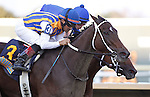 September 22, 2012. My Miss Aurelia (#3), ridden by Corey Nakatani and trained by Steve Asmussen, wins the 43rd running of the Grade 1 Cotillion Stakes at Parx Racing in Bensalem, PA, just beating Questing (inside). (Joan Fairman Kanes/Eclipse Sportswire)
