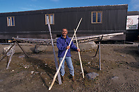 man holding narwhal tusks, Monodon monoceros, Baffin Island, Nunavut, Canada, Canadian Arctic