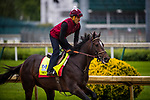 LOUISVILLE, KY - MAY 04: Mccraken gallops at Churchill Downs on May 04, 2017 in Louisville, Kentucky. (Photo by Alex Evers/Eclipse Sportswire/Getty Images)