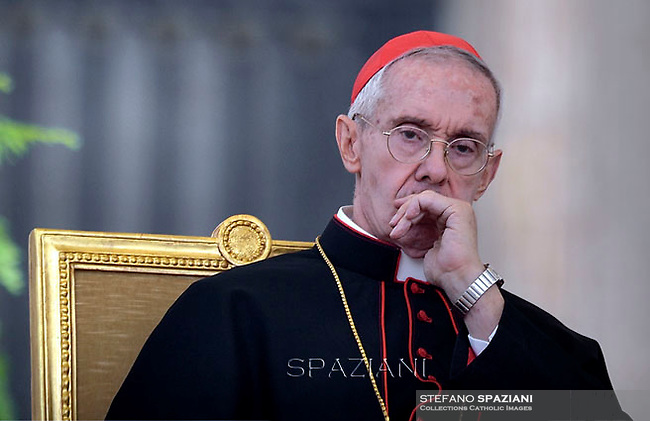 Cardinal  Jean-Louis Pierre Tauran,Pope Francis  during his weekly general audience in St. Peter square at the Vatican, Wednesday.October 28, 2015.