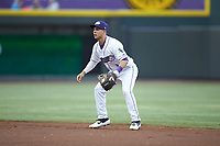 Winston-Salem Dash second baseman Nick Madrigal (3) on defense against the Lynchburg Hillcats at BB&T Ballpark on May 9, 2019 in Winston-Salem, North Carolina. The Dash defeated the Hillcats 4-1. (Brian Westerholt/Four Seam Images)