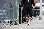 © Joel Goodman - 07973 332324. 06/12/2017 . Manchester , UK . Security searches at Manchester Central Convention Centre ahead of a visit by the Duke And Duchess Of Cambridge, Prince William and Kate Middleton, at the Children's Global Media Summit . Photo credit : Joel Goodman