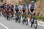 Jordi Meeus (BEL) and Ide Schelling (NED) Bora-Hansgrohe lead the peloton during Stage 6 of the 100th edition of the Volta Ciclista a Catalunya 2021, running 193.8km from Tarragona to Mataro', Spain. 27th March 2021.   <br /> Picture: Bora-Hansgrohe/Luis Angel Gomez/BettiniPhoto | Cyclefile<br /> <br /> All photos usage must carry mandatory copyright credit (© Cyclefile | Bora-Hansgrohe/Luis Angel Gomez/BettiniPhoto)