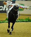 8 October 2010: Joanne Eccles (GBR) performs during the Vaulting Techincals in the World Equestrian Games in Lexington, Kentucky
