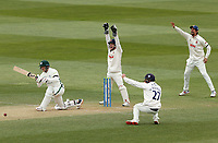 Essex players (Adam Wheater, Sir Alastair Cook and Ryan ten Doeschate) appeal for the wicket of Ben Cox during Essex CCC vs Worcestershire CCC, LV Insurance County Championship Group 1 Cricket at The Cloudfm County Ground on 10th April 2021