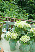 Hydrangeas in hurricane glass vases on outdoor table