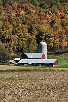Scenic farm in rural upstate New York, Homer, NY. USA