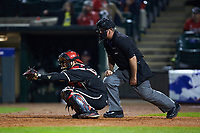 Home plate umpire Danny Everett stands behind Louisville Cardinals catcher Zeke Pinkham (11) during the game against the Notre Dame Fighting Irish in Game Eight of the 2017 ACC Baseball Championship at Louisville Slugger Field on May 25, 2017 in Louisville, Kentucky. The Cardinals defeated the Fighting Irish 10-3. (Brian Westerholt/Four Seam Images)