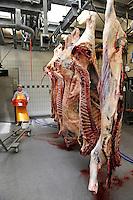 GERMANY, butchery, hanging beef meat / DEUTSCHLAND, Schlachterei, haengende Rinderhaelften