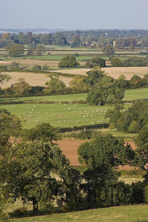 Rural landscape in the vale of Belvoir.©Tim Scrivener,Vine Cottage,Barholm,Stamford,.Lincolnshire,PE9 4RA.