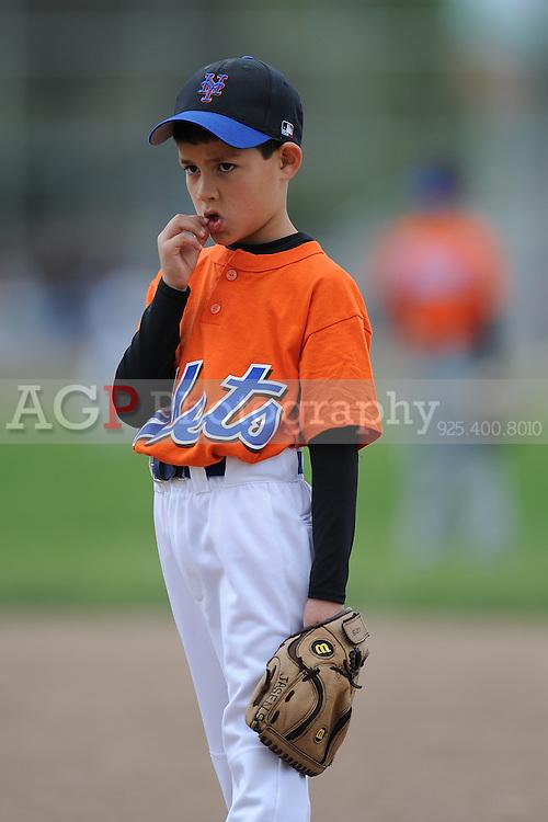 The Farm Mets of Pleasanton National Little League  March 21, 2009.