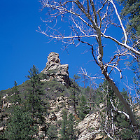 Coconino National Forest near Sedona, Arizona, USA - Sandstone Cliffs in Oak Creek Canyon