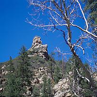 Coconino National Forest near Sedona, Arizona, USA - Sandstone Cliffs in Oak Creek Canyon