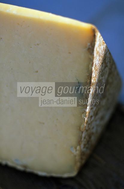 Europe/France/Auvergne/15/Cantal/AOC Cantal Salers AOC des Fromages d'Auvergne