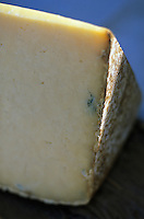 Europe/France/Auvergne/15/Cantal/AOC Cantal Salers AOC des Fromages d'Auvergne