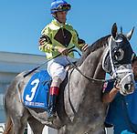 OLDSMAR, FLORIDA - FEBRUARY 13: Destin  #3, ridden by jockey John Velzaquez, wins the Sam F. Davis Stakes at Tampa Bay Downs on February 13, 2016 in Oldsmar, Florida (photo by Doug DeFelice/Eclipse Sportswire/Getty Images)