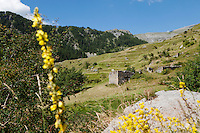 Ruined settlements above the hamlet of Vignols in the Mercantour National Park, French Alps, France, 01 August 2013