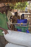 Cashew Nut Buyer Paying Seller,  Fass Njaga Choi, The Gambia.