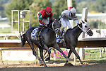 September 1, 2014: Protonico (outside, #8), Joe Bravo up, gets past Classic Giacnroll (with Kendrick Carmouche) just before the wire to win the grade 3 Smarty Jones Stakes at Parx Racing in Bensalem, PA. Trainer is Todd Pletcher. Owner is International Equities Holding, Inc. ©Joan Fairman Kanes/ESW/CSM