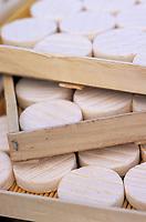 Europe/France/Midi-Pyrénées/46/Lot/Env de Rocamadour: Les fromages cabecous AOC Rocamadour de la chèvrerie-fromagerie ferme de la Borie d'Imbert
