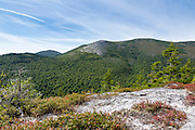 Baldface Mountain Range from Bicknell Ridge Trail in the White Mountains, New Hampshire. Charles Ravine is straight ahead.