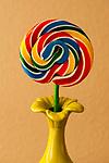 Lollipop in green vase with warm window light
