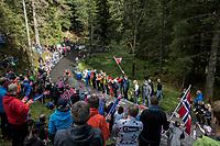 Syrian rider Nazir Jaser (SYR) up the final section of Mount Fløyen<br /> <br /> Men Elite Individual Time Trial<br /> <br /> UCI 2017 Road World Championships - Bergen/Norway