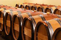 A row of barrels - The barrel cellar for aging the wines in oak casks - Chateau La Grave Figeac, Saint Emilion, Bordeaux
