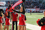 December 30, 2016: A Georgia Bulldog cheerleader performing on the sidelines of the AutoZone Liberty Bowl inside Liberty Bowl Memorial Stadium in Memphis, Tennessee. ©Justin Manning/Eclipse Sportswire/Cal Sport Media
