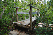 Bridge along the Appalachian Trail (Ethan Pond Trail) in the New Hampshire White Mountains. This bridge crosses the North Fork of the East Branch of the Pemigewasset River.
