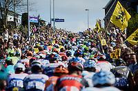 peloton up the Berendries<br /> <br /> 100th Ronde van Vlaanderen 2016