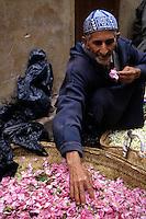Fez, Morocco - Rose Petal Vendor Ayachi El-Bachiri.