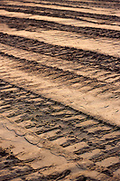 bulldozer tracks in sand