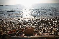SEA_LOCATION_80133