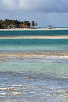Cuba,  Wattlandschaft zwischen Cayo Coco und Cayo Guillermo, Archipielago de Camagüey, Provinz Ciego de Avila