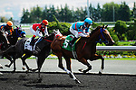 So Long George (3) with jockey Emma-Jayne Wilson passes Special Selection (5) with jockey Eurico Rosa Da Silva at Woodbine Race Course in Ontario, Canada on September 15, 2012.