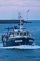 Europe/France/Aquitaine/64/Pyrénées-Atlantiques/Pays-Basque/Saint-Jean-de-Luz: Bateau de pêche rentrant au port
