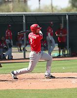 Tyler Stephenson - Cincinnati Reds 2018 spring training (Bill Mitchell)