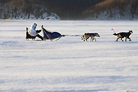 Martin Buser runs on the Yukon River on Saturday between Eagle Island and Kaltag in 35-45 mph wind