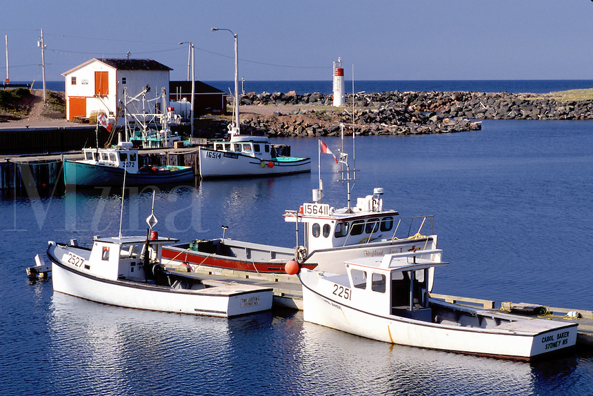 Cape Breton, Nova Scotia, NS, Canada, Fishing boats docked in harbor on Pleasant Bay on the Gulf of St. Lawrence in Cape Breton.