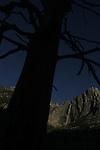2009 Yosemite Winter