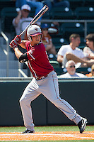 Oklahoma Sooners catcher Dylan Neal #18 at bat against the Texas Longhorns in the NCAA baseball game on April 6, 2013 at UFCU DischFalk Field in Austin, Texas. The Longhorns defeated the rival Sooners 1-0. (Andrew Woolley/Four Seam Images).