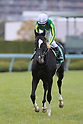 Horse Racing : Mainichi Hai at Hanshin Racecourse