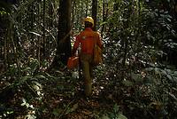 Área de manejo sustentável para exploração madeireira da Cikel.Paragominas, Pará, BrasilFoto Paulo Santos/Interfoto17/11/2008