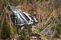 Gibbon Fall, Yellowstone