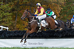 07 November2010: Tizsilk and Paddy Young lead Zulla Road and Jacob Roberts in the Constitution Hurdle at Montpelier Hunt Races in Montpelier Station, Va. Tizsilk is owned by Roger O'Byrne and trained by Tom Voss.     Susan M. Carter/Eclipse Sportswire