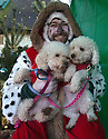"""18/12/16<br /> <br /> Miniature Poodles Pickle and Punchy.<br /> <br /> Close to 800 dogs, many of them dressed up in festive garb, have visited their very own Santa Paws in a special dog-only Christmas grotto held in Sherwood Forest in Nottinghamshire this weekend.<br /> The two-day event, which was organised by park rangers working for Nottinghamshire County Council, has been running for three years.<br /> Ranger Graeme Turner, who originally came up with the idea for a doggy-themed Santa's Grotto said this year has been the best so far.<br /> """"The queue is huge, it snakes back all the way round the visitor's centre,"""" he said. """"All the dogs are being very well behaved, I guess they don't want to get onto Santa Paw's naughty list this close to Christmas!""""<br /> All canine visitors to the grotto got a special doggy bag full of treats and money raised from the event will go to Jerry Green Dog Rescue charity.<br /> <br /> All Rights Reserved F Stop Press Ltd. (0)1773 550665   www.fstoppress.com"""