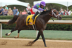 HOT SPRINGS, AR - MARCH 17: Magnum Moon #4 with jockey Luis Saez aboard before crossing the finish line in the Rebel Stakes at Oaklawn Park on March 19, 2018 in Hot Springs, Arkansas. (Photo by Justin Manning/Eclipse Sportswire/Getty Images)